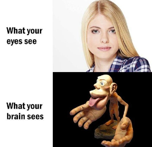 What your eyes see